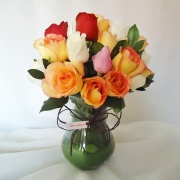Rosas Multi Cor