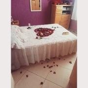 Pétalas e rosas