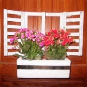 Janelinha com flores